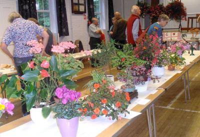 Annual Horticultural Show